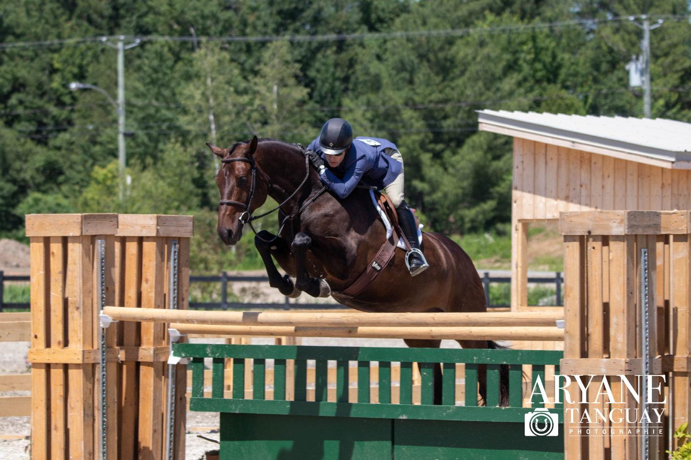 chevaux_carrera_6